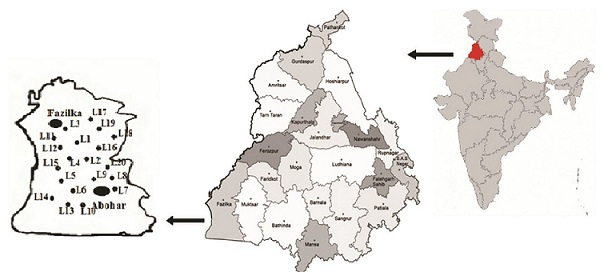 अध्ययन क्षेत्र में शामिल विभिन्न स्थान (L) जहां से नमूने एकत्रित किए गए हैं | फोटो : इंडिया साइंस वायर